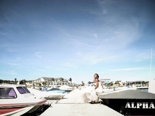 Arline Photography & Video