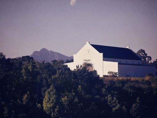 Venue – Bramon Wine Estate