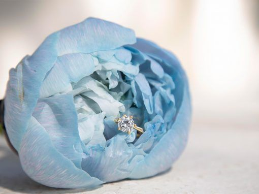 Undulating Blues Styled Shoot