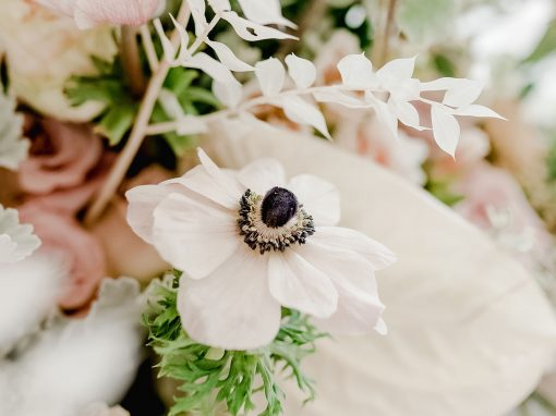 SA Weddings talks summer trends and Bride Of The Year Competition